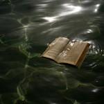 libro mar 12